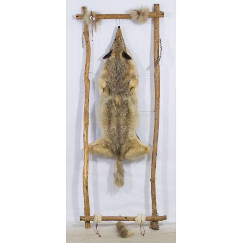 Framed Taxidermy Fox