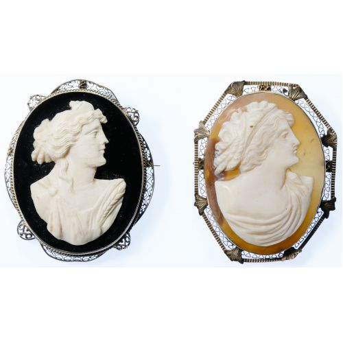 14k White Gold and Cameo Pin / Pendants