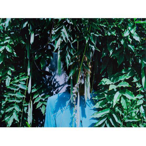 "Zohra Opoku (German / Ghanaian, b.1976) ""Wisteria"" Pigment Print"