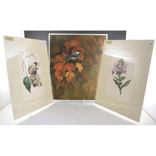(3) Botanical Prints