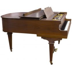 View 3: Marshal & Wendell Baby Grand Piano
