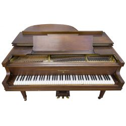 View 4: Marshal & Wendell Baby Grand Piano