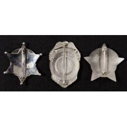 View 2: Illinois Police and Security Badge Assortment