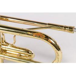 View 4: Frank Holton Model T602P Trumpet
