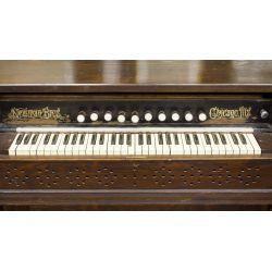 View 2: Oak Organ by Newman Bros.