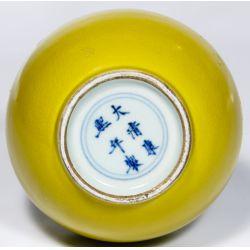View 5: Chinese Kangxi Mark Mustard Yellow Long Neck Vase