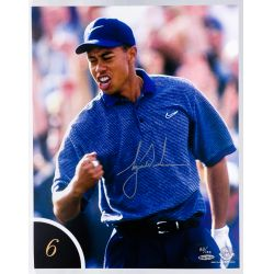 View 7: Tiger Woods 10 Best Shots Autographed Collection