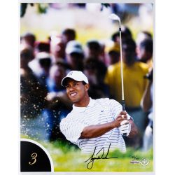 View 4: Tiger Woods 10 Best Shots Autographed Collection