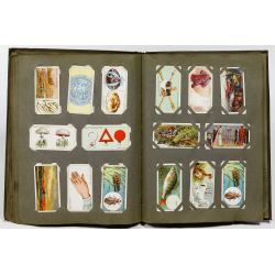 View 7: Cigarette Card Collection