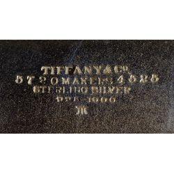 "View 4: Tiffany & Co. ""Chrysanthemum"" Sterling Silver Master Salts"