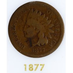 View 3: Flying Eagle and Indian Head 1c Complete Set