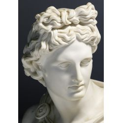 """View 5: (After) C Delpech (French, 19th Century) """"Apollo"""" Parian Bust"""