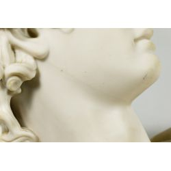 """View 9: (After) C Delpech (French, 19th Century) """"Apollo"""" Parian Bust"""