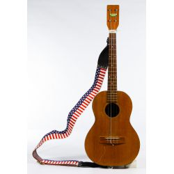 View 4: String Instrument and Accessory Assortment