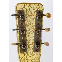 View 8: Gulden Lap Steel Electric Guitar