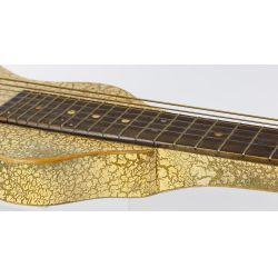 View 5: Gulden Lap Steel Electric Guitar
