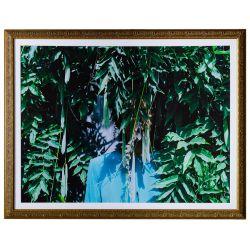 "View 2: Zohra Opoku (German / Ghanaian, b.1976) ""Wisteria"" Pigment Print"