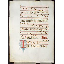 View 3: Illuminated Antiphonal Vellum Hymnal Sheets