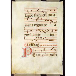 View 6: Illuminated Antiphonal Vellum Hymnal Sheets