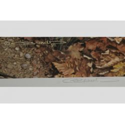 """View 2: Carl Brenders """"Pathfinder"""" Signed Print"""